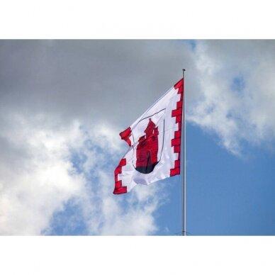 Panevėžio vėliava 2