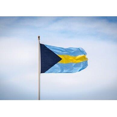 Bahamų vėliava 2