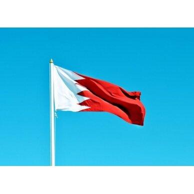Bahreino vėliava 2
