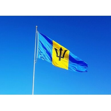Barbadoso vėliava 2
