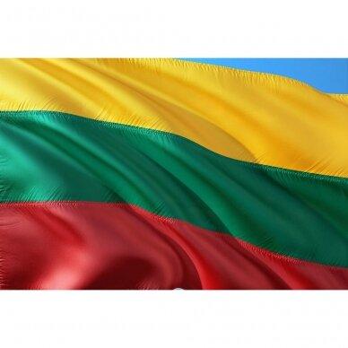 Bet kokio dydžio Lietuvos valstybinė vėliava 2