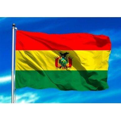 Bolivijos vėliava 2