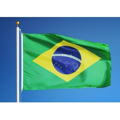 Brazilijos vėliava 2