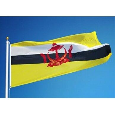 Brunėjaus vėliava 2