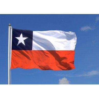 Čilės vėliava 2