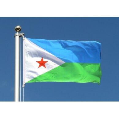 Džibučio vėliava 2