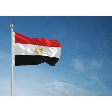 Egipto vėliava 2