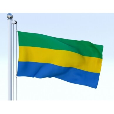 Gabono vėliava 2
