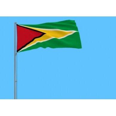 Gajanos vėliava 2