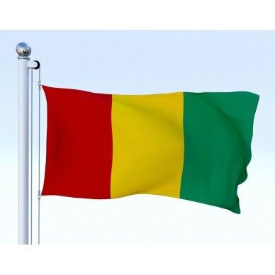 Gvinėjos vėliava 2