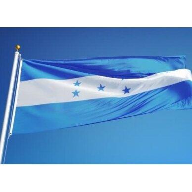 Hondūro vėliava 2