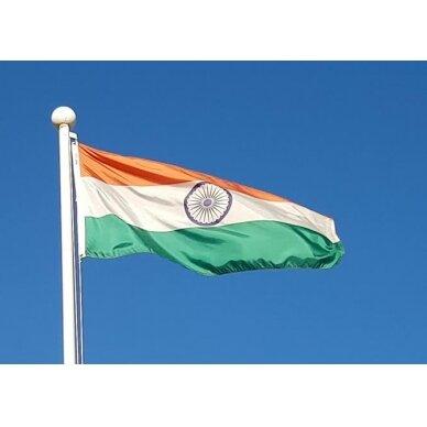 Indijos vėliava 2