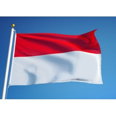 Indonezijos vėliava 2