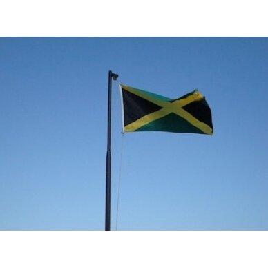 Jamaikos vėliava 2