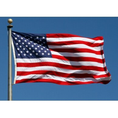 JAV vėliava 2