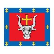 Kauno apskrities vėliava