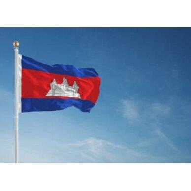 Kambodžos vėliava 2