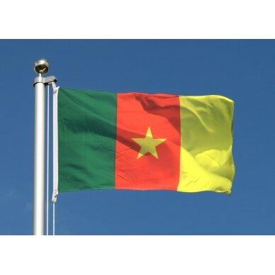 Kamerūno vėliava 2
