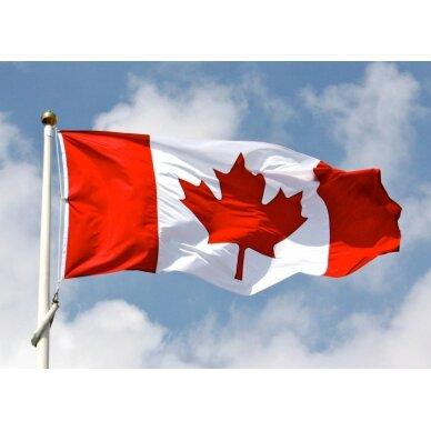 Kanados vėliava 2