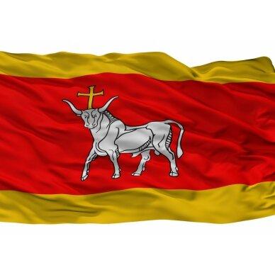 Kauno vėliava 3