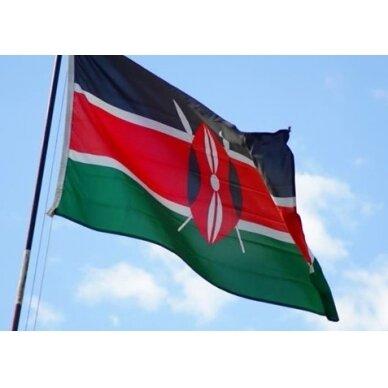 Kenijos vėliava 2