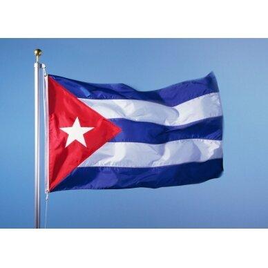 Kubos vėliava 2