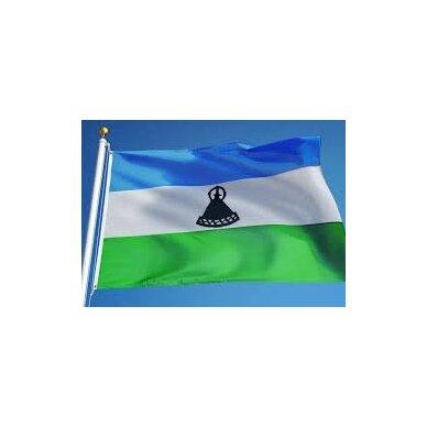 Kuveito vėliava 2