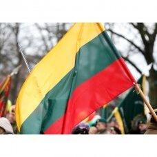 Lietuvos Respublikos vėliava 150 x 250 cm maunama ant koto