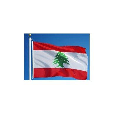 Libano vėliava 2