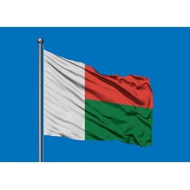 Madagaskaro vėliava 2