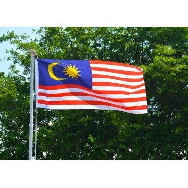 Malaizijos vėliava 2