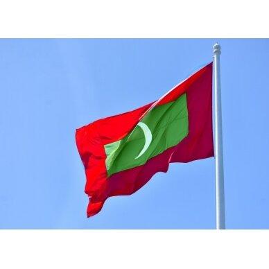 Maldyvų vėliava 2