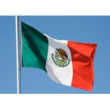 Meksikos vėliava 2