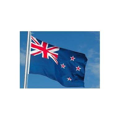 Naujosios Zelandijos vėliava 2