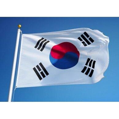 Pietų Korėjos vėliava 2