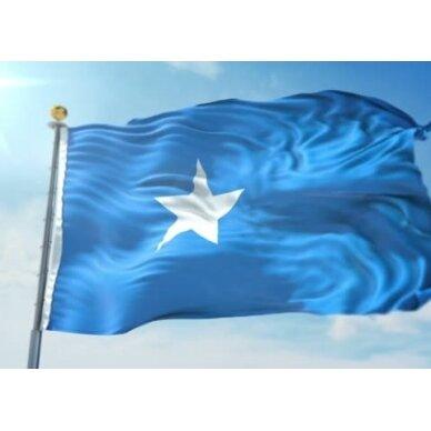 Somalio vėliava 2