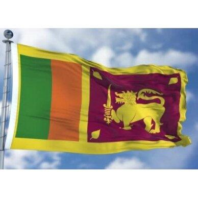 Šri Lankos vėliava 2