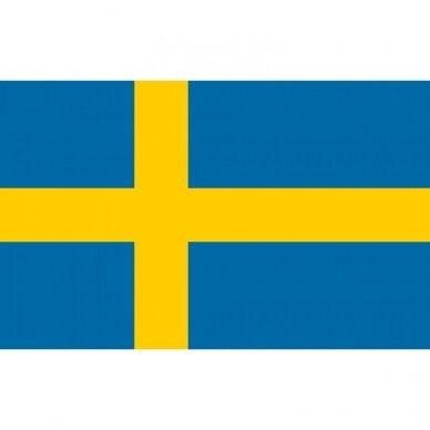 Švedijos vėliava 2