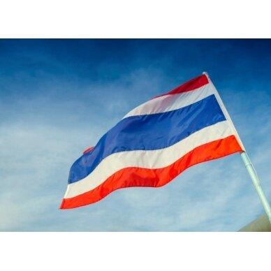 Tailando vėliava 2