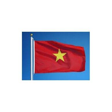Vietnamo vėliava 2